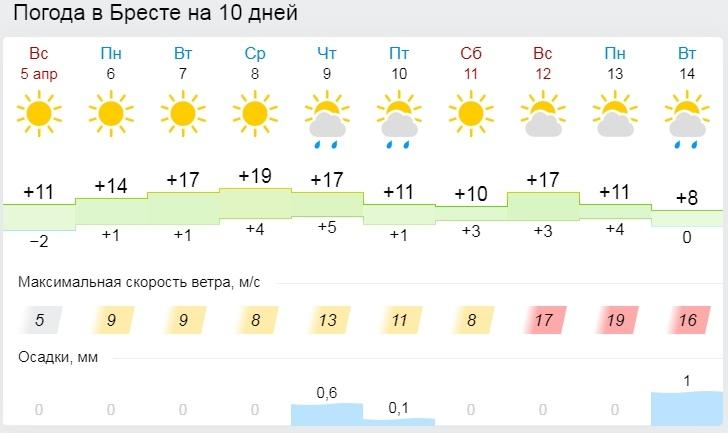 Как лето, только весна. До +17°С ожидается в Беларуси 6 апреля