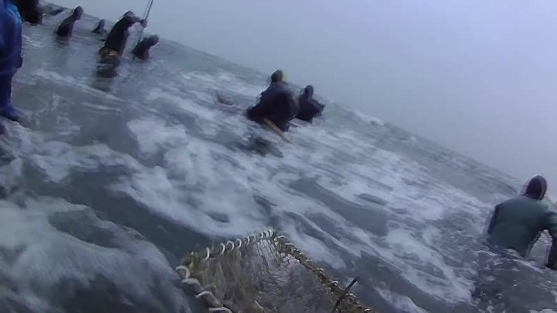 Ловля янтаря в Балтийском море