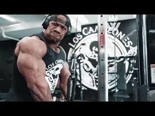 Monster of bodybuilding _ huge back