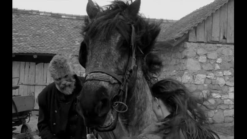 Туринская лошадь 2011 Бела Тарр Агнес Храницки Венгрия драма