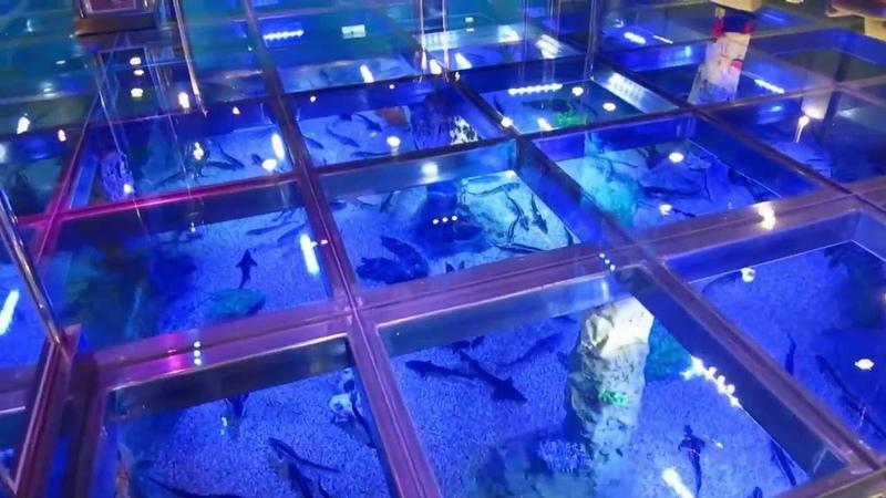 Океанариум в гостиничном комплексе Caspian Riviera Grand Palace в Актау