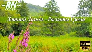 Летний Дождь: Шум Дождя & Раскаты Грома 2 ЧАСА | Настоящие Звуки Природы