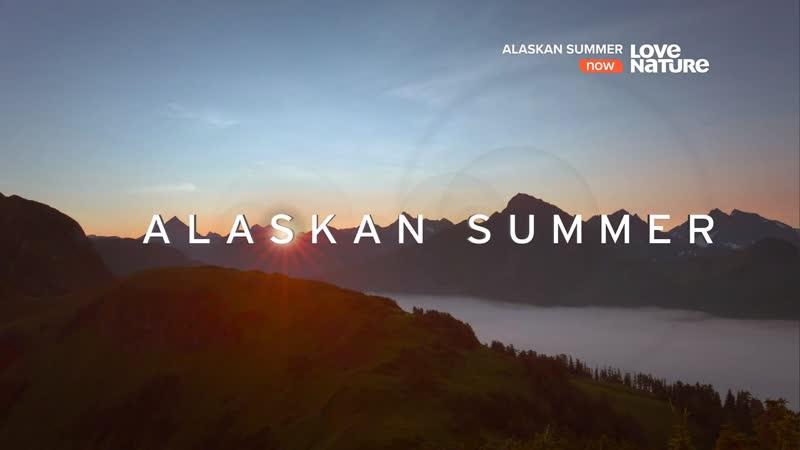 Лето на Аляске