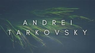 The Beauty Of Andrei Tarkovsky