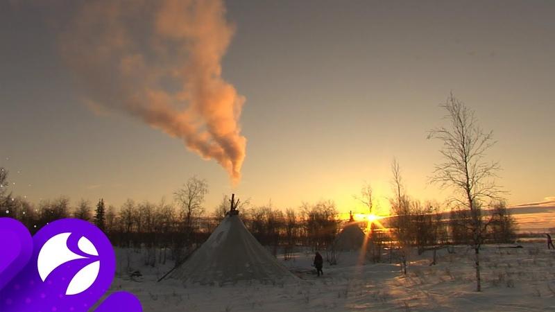 На Ямале этностойбище Нерня Миндя открыло двери для всех желающих