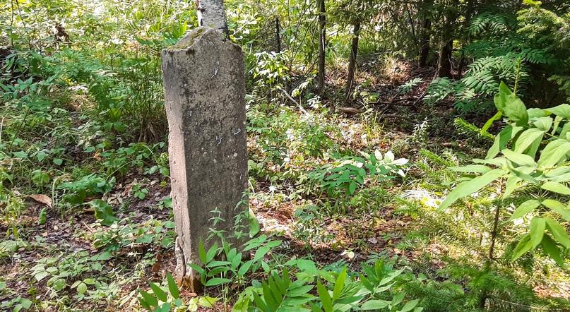 Старое татарское (мусульманское) кладбище, изображение №5