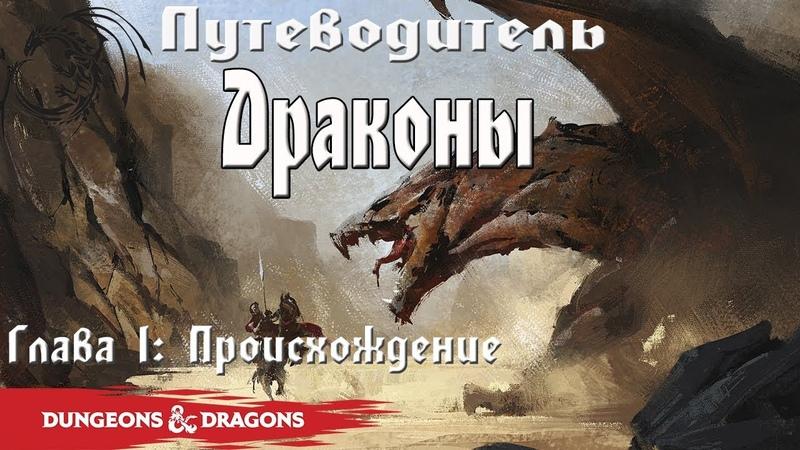 Драконы | Forgotten Realms | Lore DD