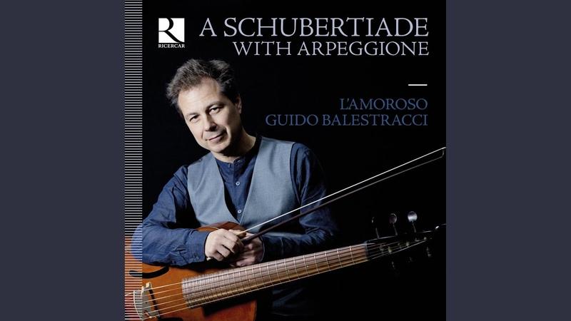Sonatine No 1 in D Major D 384 I Allegro molto