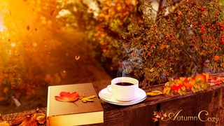 🍁AUTUMN MORNING AMBIENCE: Leaves Falling, Nature Sounds, Pages Turning, Coffee Pouring