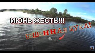 ТАКОГО НЕ ОЖИДАЛ!!! БЕШЕНАЯ ЩУКА!!! ЗАКОНЧИЛСЯ НЕРЕСТ!  Рыбалка в июне с лодки на щуку, окуня.