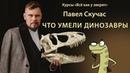 Павел Скучас Что умели динозавры Курсы юного натуралиста Всё как у зверят