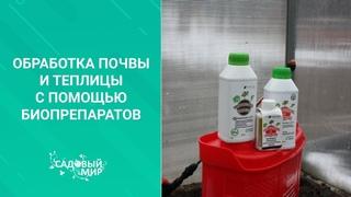 Парник и теплицу обязательно обрабатываем весной от вредителей и болезней! Готовимся к посадкам.