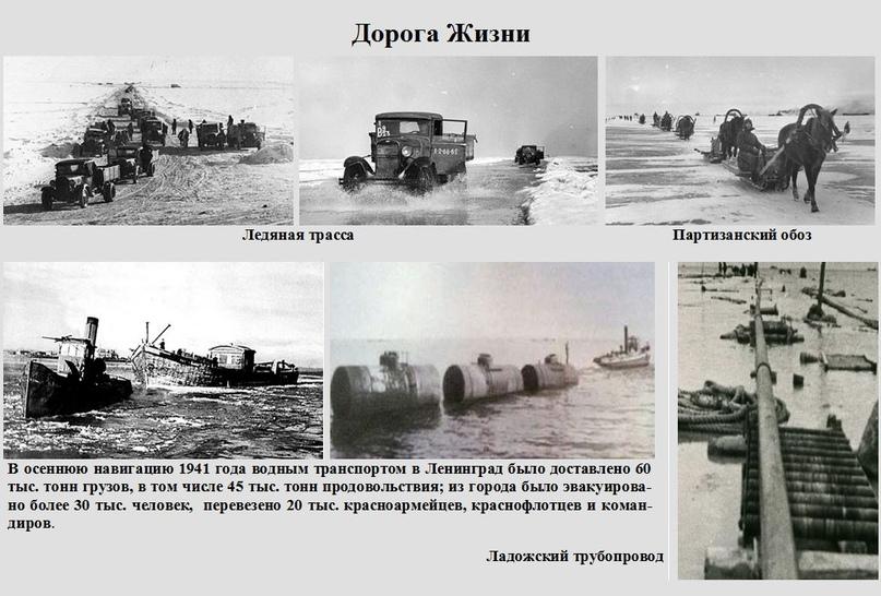 Блокада Ленинграда: история 827 дней в осаде., изображение №7