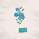 Обложка Незабудка - Тима Белорусских