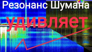 Что происходит с графиками Резонанса Шумана обзор разных СТРАН  и