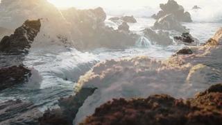 Nature's Wonders: Dance of the Sugar Plum Fairy by Tchaikovksy crashing ocean waves