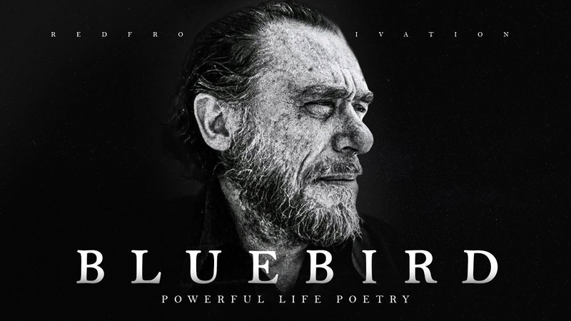 Bluebird Charles Bukowski Powerful Life Poetry