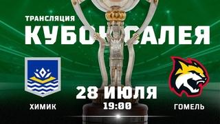 Химик – Гомель      Кубок Салея