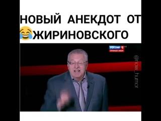 Жириновский Анекдот