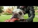 X-Men: Apocalypse | Quicksilver Scene | Don't Stop Me Now by Queen