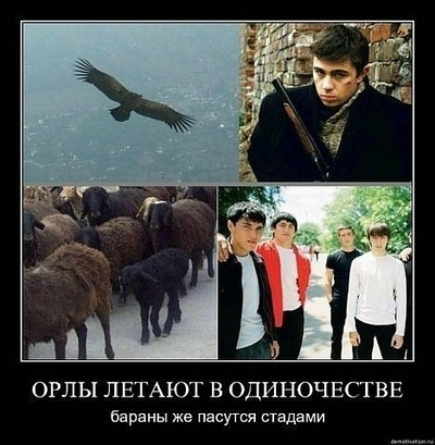 Антон Евдокименков