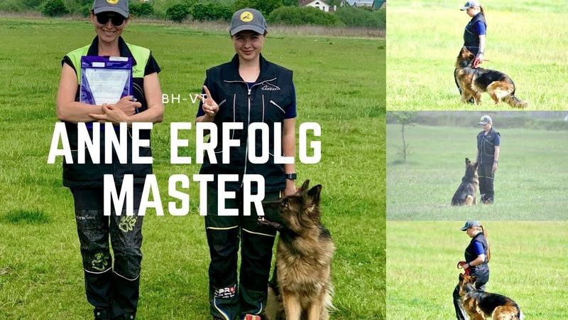 Дрессировка собаки по BH-VT с немецкой овчаркой Anne Erfolg Master
