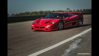 Ferrari F50 - Драйверские опыты Давида Чирони