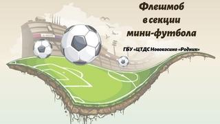 Флешмоб в секции мини-футбола.  г. Секция работает под руководством Ибрагимова Р. А.