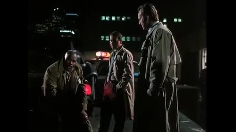 Ed McBain´s 87th Precinct Lightning 1995 Randy Quaid Alex McArthur Ving Rhames Eddie Jones Johann Carlo Bruce Paltrow