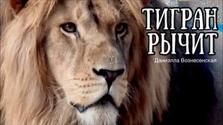 Лев ТИГРАН - двойник Алишки! ПОСЛУШАЙТЕ ГРОЗНЫЙ РЫК!