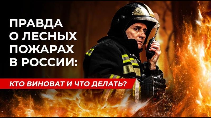 Правда о лесных пожарах в России кто виноват и что делать