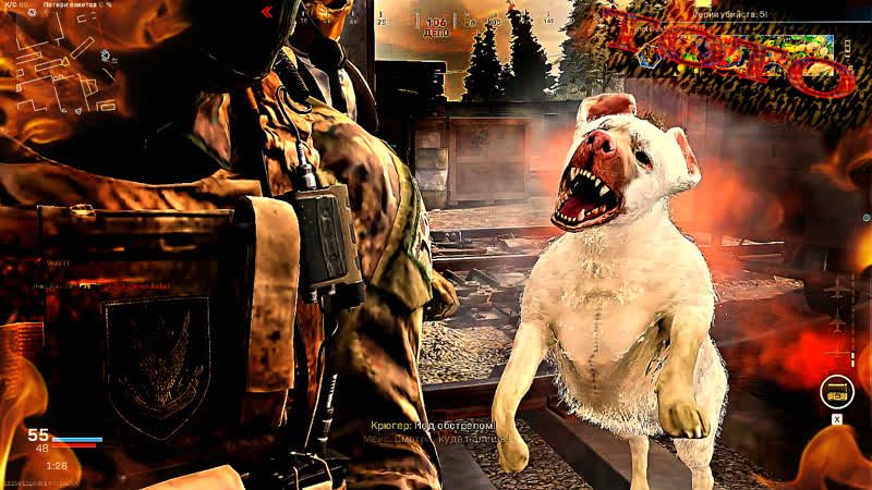 Новый добрый друг по имени ТОТО в Call of Duty Modern Warfare Warzone Калл оф Дьюти Варзон