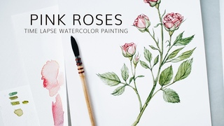 Pink roses watercolor painting · Botanical Illustration Time Lapse