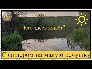Хочешь бойкую РЫБУ? Рыбалка на реке Свияга