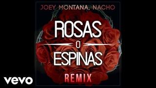 Joey Montana, Nacho - Rosas O Espinas (Audio / Remix)