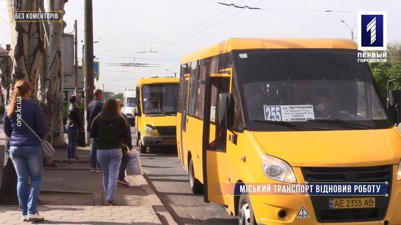 Без коментарів міський транспорт відновив роботу в звичному режимі