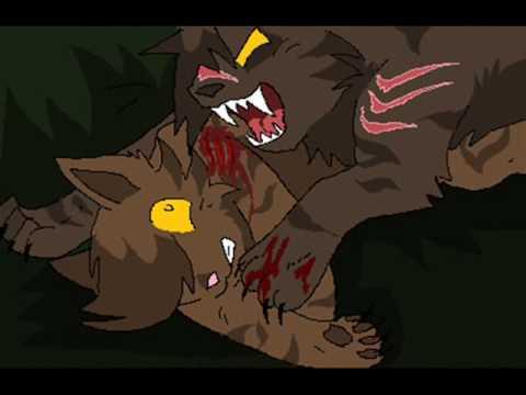 Brambleclaw and hawkfrost feel like monster (warriorsAMV)