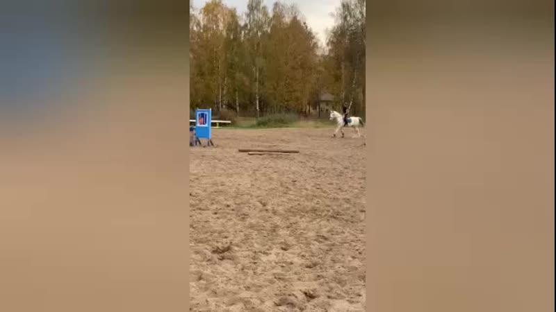 Бабье лето Тепло Уля и Орех развлекаются