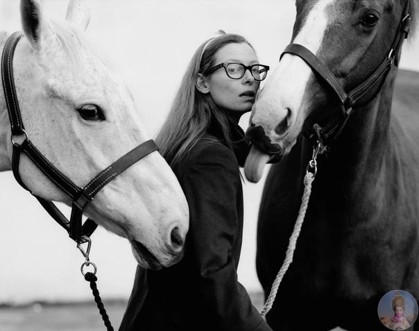 Фотосессии Тильды Суинтон как отдельный сорт визуального наслаждения