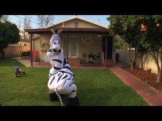 Dope zebra rhett & link