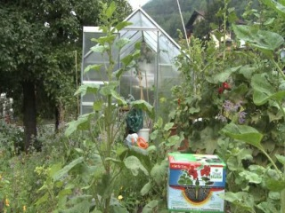 Система полива Blumat необходима каждому хозяину прекрасного сада