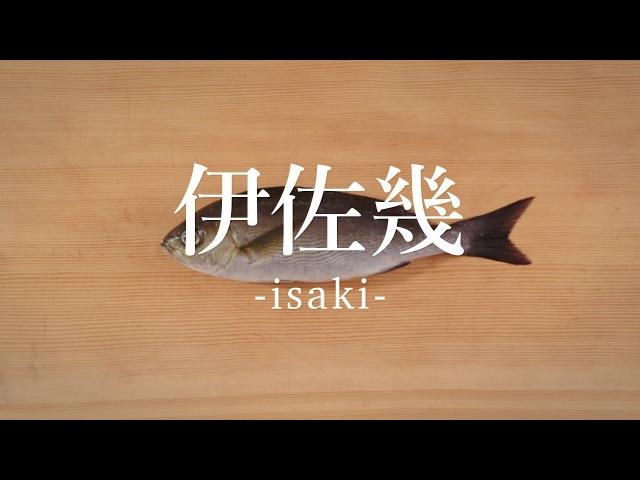 伊佐幾(いさき)のさばき方 - How to filet Striped Pigfish -|日本さばけるプロジェクト