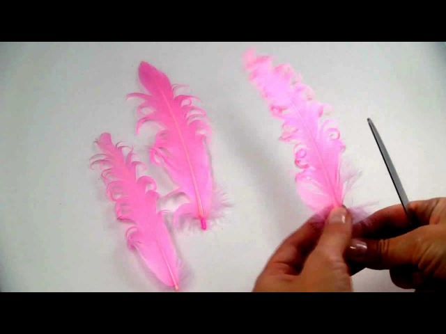 How to Curl a Feather
