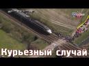 Скоростной поезд проехал прямо во время движения спортсменов по железнодорожному полотну. crjhjcnyjq gjtpl ghjt[fk ghzvj dj dhtv