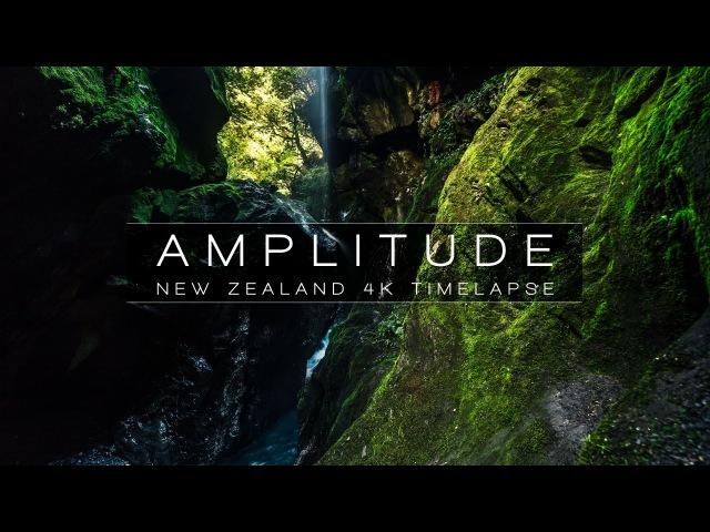 AMPLITUDE | NEW ZEALAND