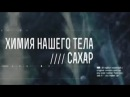 Химия нашего тела Сахар 03 10 2015 Документальный фильм