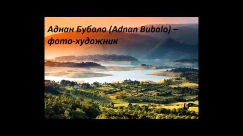 Аднан Бубало Adnan Bubalo фото художник