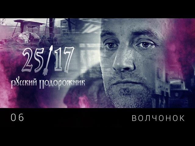 25 17 06 Волчонок Русский подорожник 2014