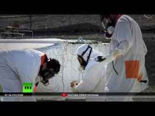 Атомная угроза: самые опасные американские АЭС