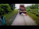 Top.Gear.The.Burma Топ Гир в Бирме Спецвыпуск 2014